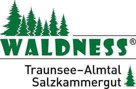 Waldness_Traunsee_FINAL Kopie.jpg