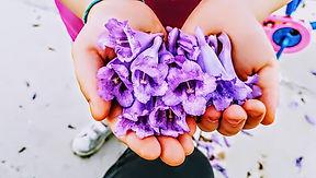 Regalo de flores violetas (2).jpg
