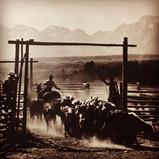 historic ranch photo, Jackson, WYO~