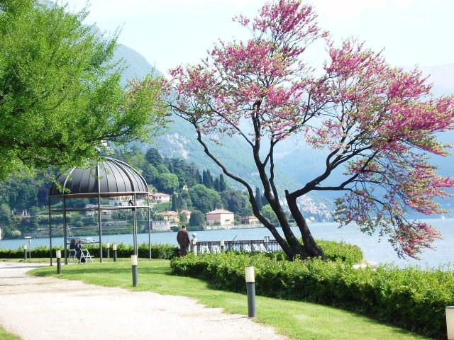 villa erba design conference grounds~