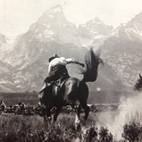 Historic Jackson Hole ranch photo~