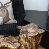 LPJH Luxury Properties Jackson Hole, Bear Trap Cabin, Study~