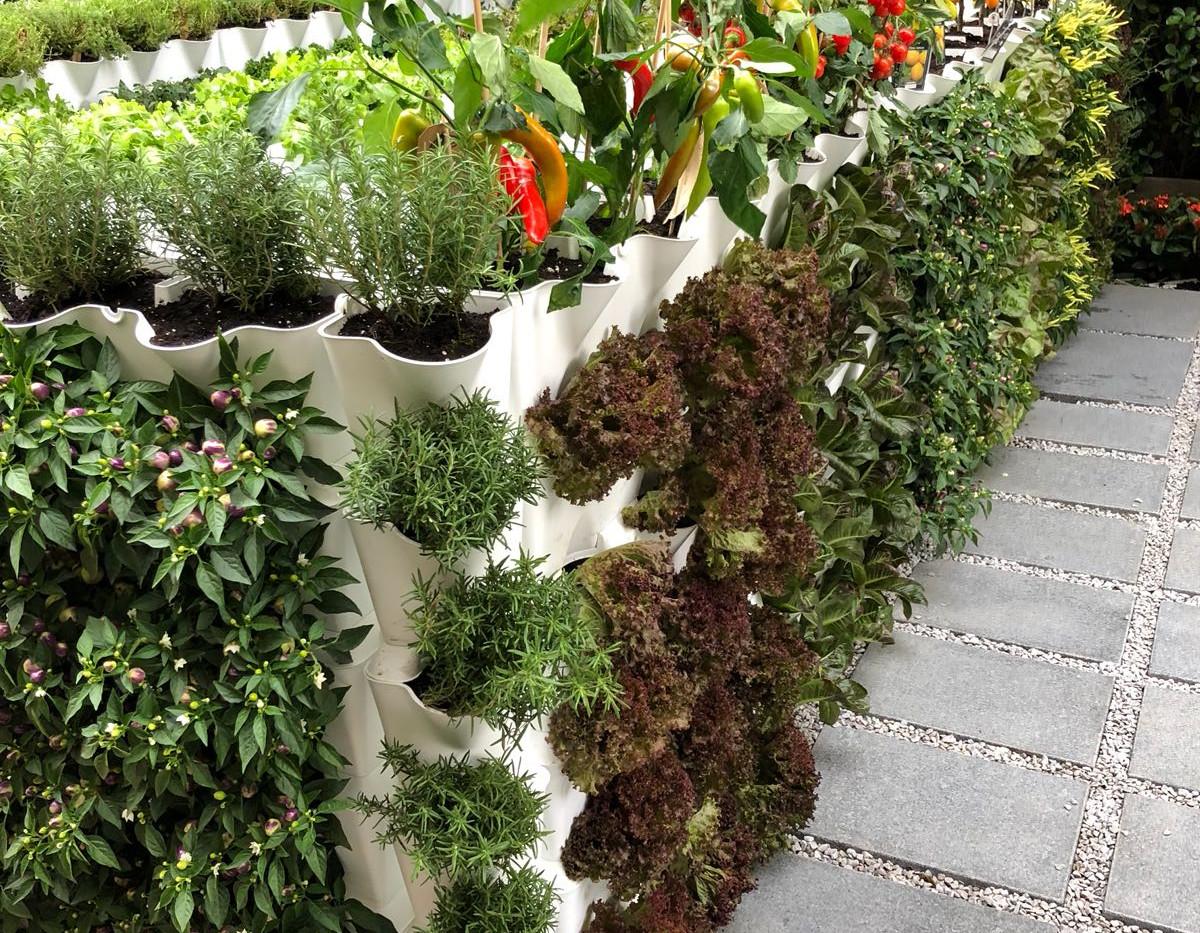 mini garden sai kung 6.jpg