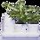Thumbnail: Minigarden Basic S Pots
