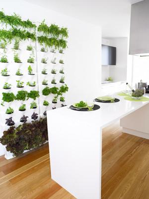 kitchen_4300.jpg