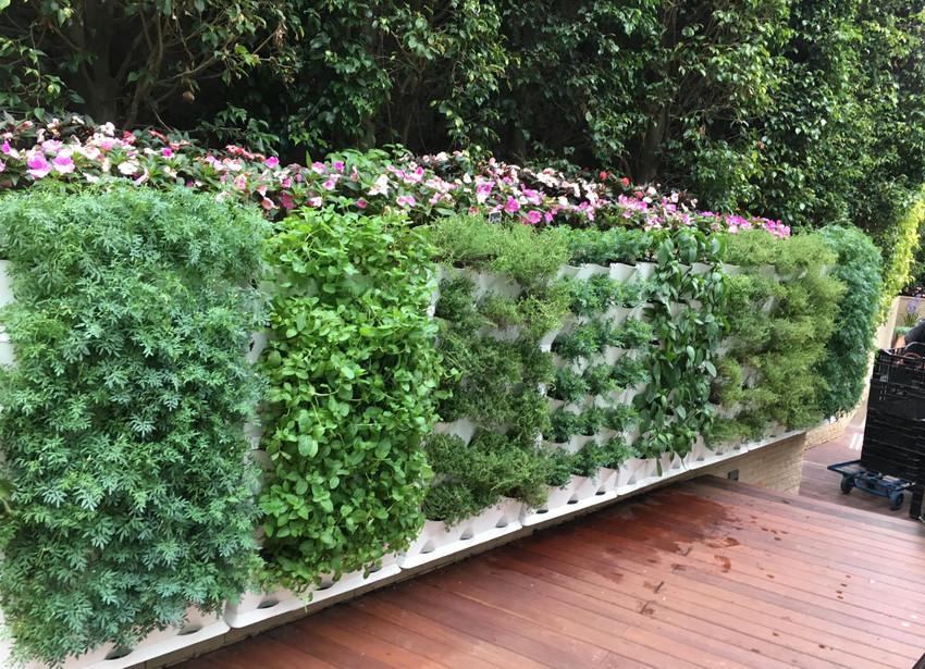 Caballo Living Garden Design and Build 5