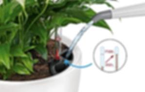 LECHUZA sub-irrigation system 7.jpg