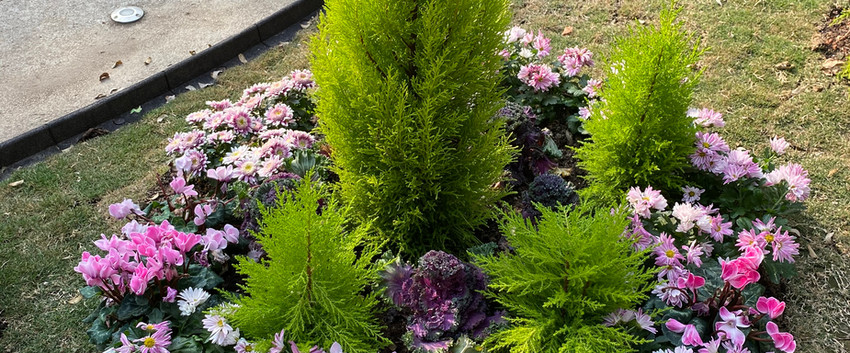 Garden Design 2020-10-19-16-56-30 Caball
