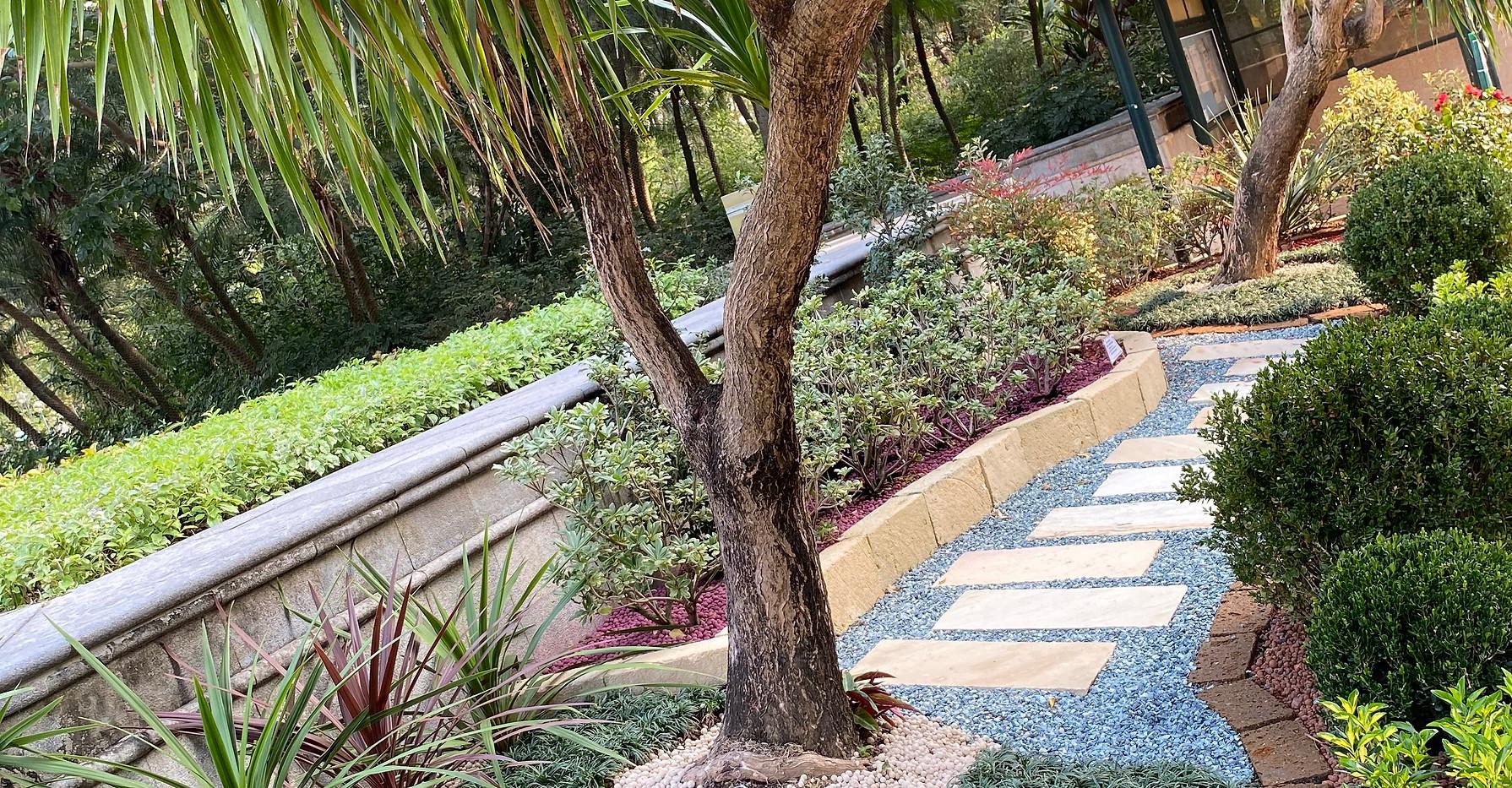 Garden Design 2020-10-19-16-56-27 Caball