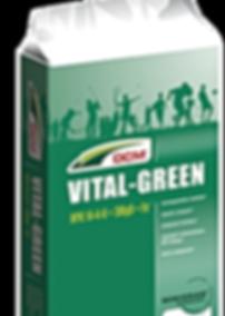 DCM Vital green.png