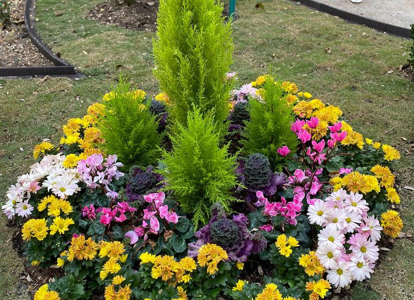 Garden Design 2020-10-19-16-56-31 Caball
