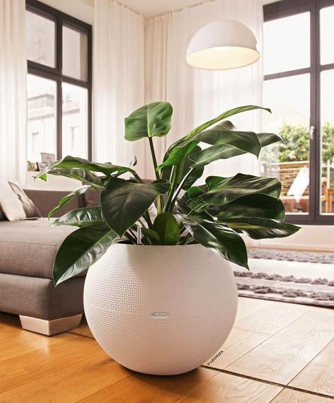 Lechuza PURO Color 50 Planter