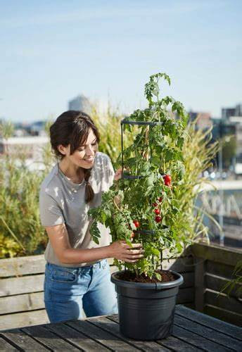 Elho Tomato Pot 33 cm