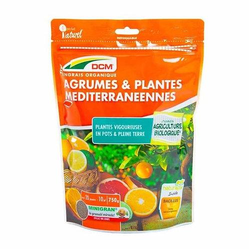 DCM Fertilizer (Fruits)