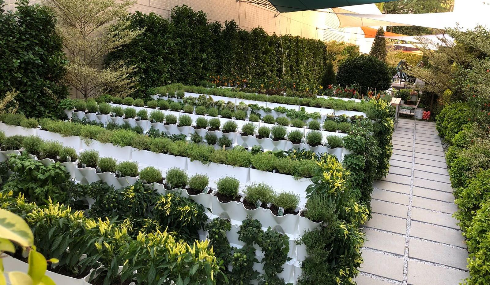 mini garden sai kung 7.jpg