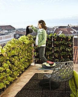 balcony_1300.jpg