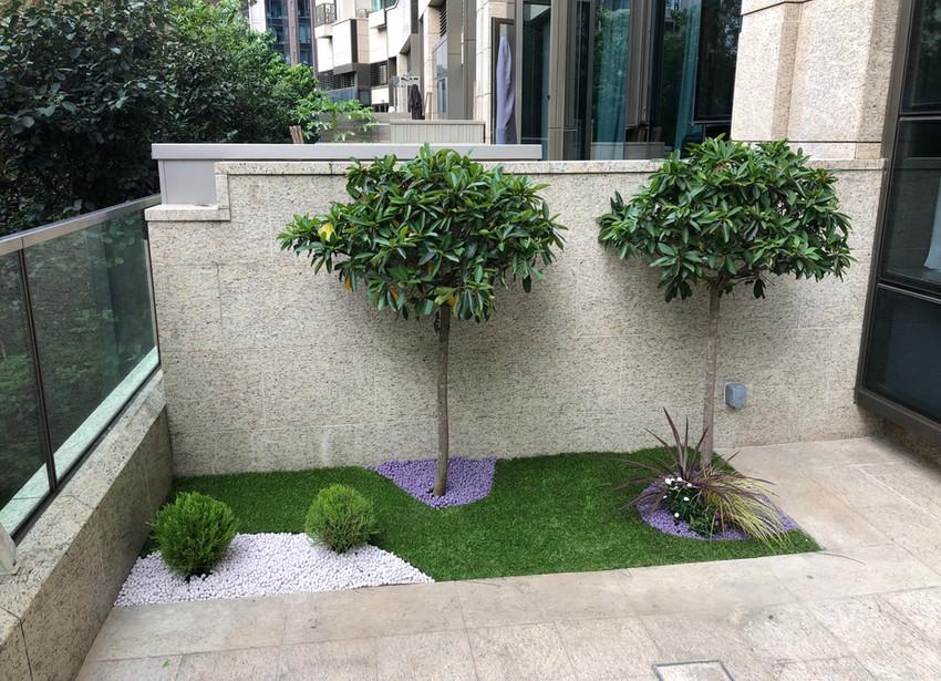 Caballo Living Garden Design and Build 6