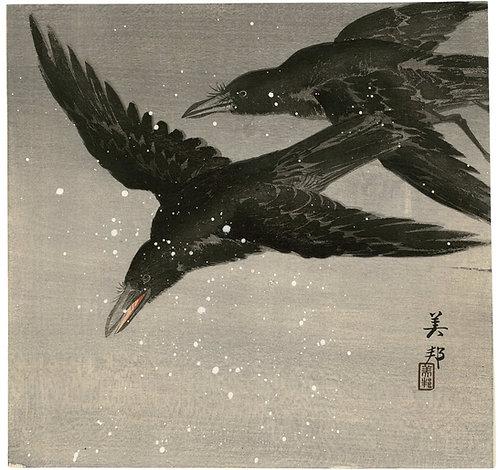 Biho - Crows in flight