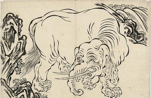 Unsigned - elephant
