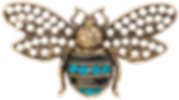 BugBrooch-1_clipped_rev_1.png
