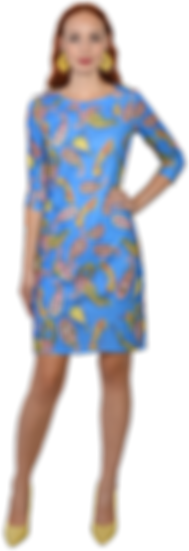 Jodi Blue Model.png