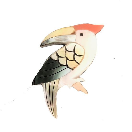 Toucan Brooch