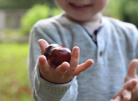 The acorn or the oak tree?