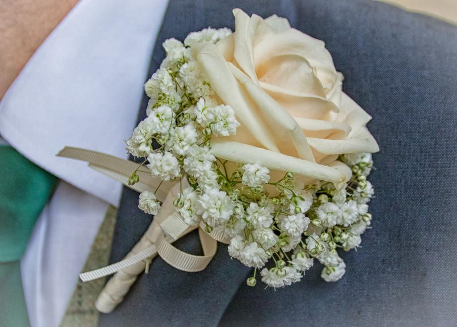 Wedding - St Lawrences, Gt Waldingfield