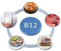 The nervous nutrient: vitamin B12