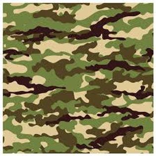 Camuflagem1.jpeg