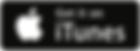 iTunes-300x109.png
