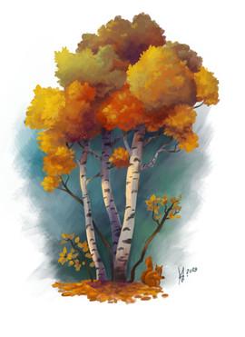 Birch trees, study