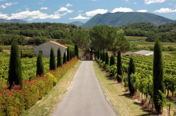 Provence France.jpg