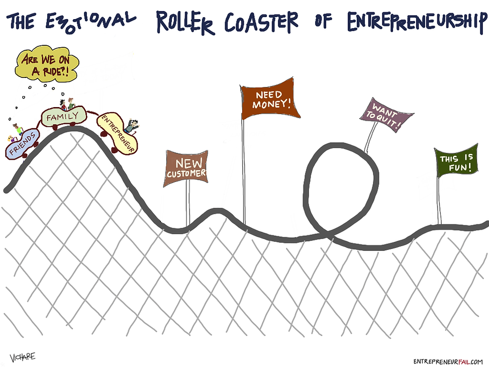 Startup Rollercoaster.png