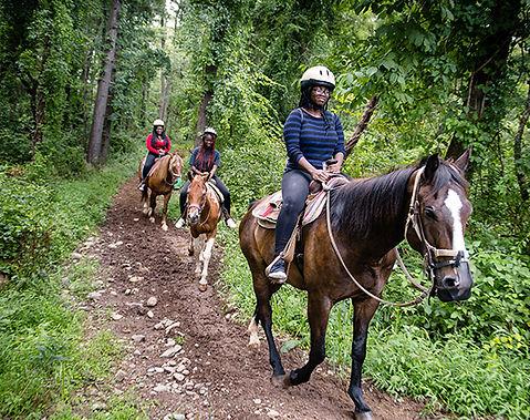 Poconos Mountain Fun Horses.jpg