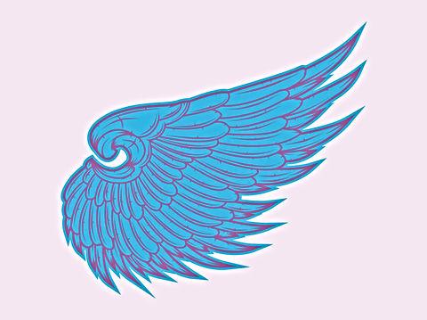 Angel Wing.jpg