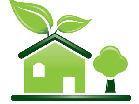 Program Zelená škola