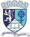 Logo lliw Llanilar.jpg
