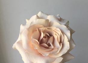 The Complete DIY Wedding Flower Checklist