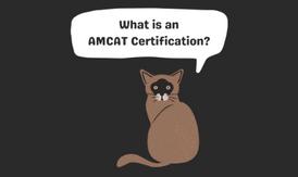 AMCAT Certification.png
