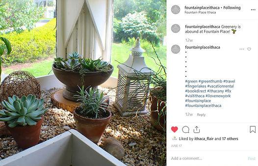 FP_instagram_post.jpg