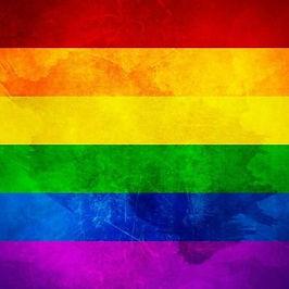 LGBTQ flag.jpg