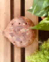 Ocarina-1600.jpg