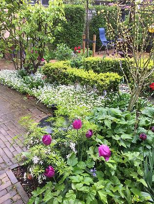 Een plantenborder in de lente.