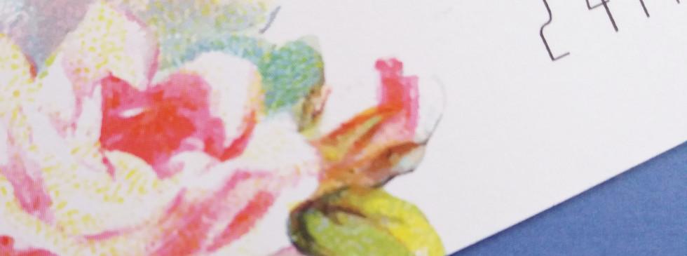 TWEET - rose detail