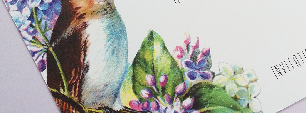 TWEET - wren detail