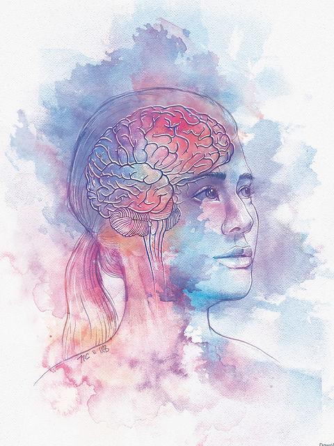 TN2018 Neuroanatomy photoshop painting original