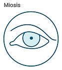 miosis icon