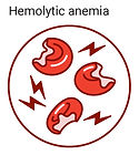 hemolytic anemia icon