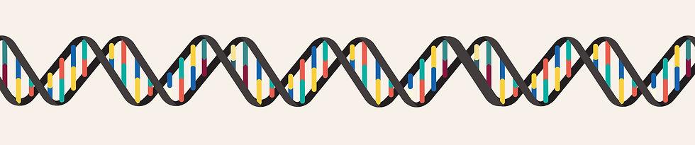 DNA and nucleotide bases